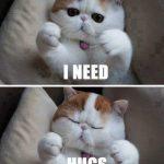 Imagen mega tierna del dia: necesito abrazos