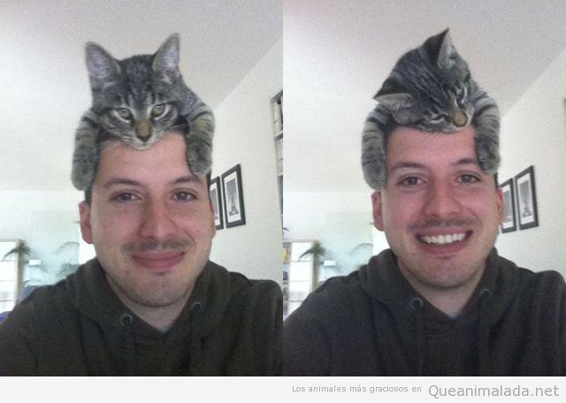 Foto graciosa de un gato en la cabeza que hace de sombrero
