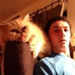 Este gato es un faltón...