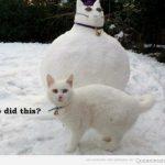 Quién ha hecho este muñeco de nieve?