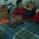 Tu perro, esa mesa auxiliar para ordenador