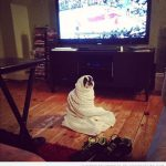 Me encanta estar en casa con la mantita viendo la tele…