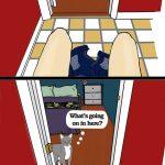 Diferencia entre perros y gatos (comic)