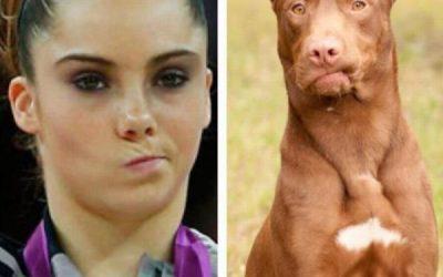 Este perro is not impressed