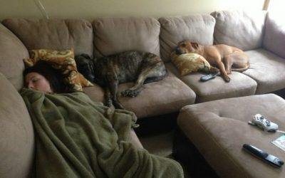 La hora de la siesta en mi casa es sagrada!