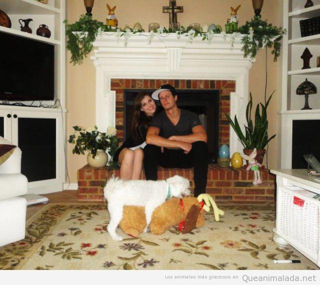 Perro montando a un peluche y fastidiando la foto a una pareja