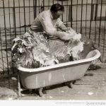Nada, aquí, bañando a mi mascota…