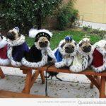 Vaya grupo de Reyes Magos…