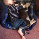 Foto super tierna del día: qué bien dormimos junticos