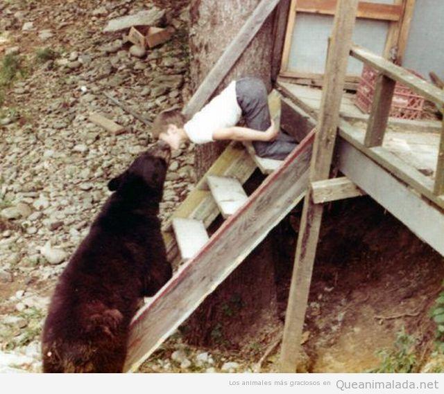 Niño besando a un Oso Pardo en porche de casa