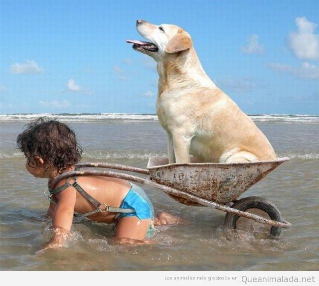 Niña y perro en la playa, son lo máximo!