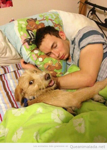 Lo que hace tu perro mientras duermes en la cama