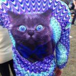 RT o Like si tú también quieres esta camiseta de gato…