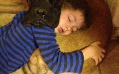 Las mejores siestas son las que te echas con tu perro