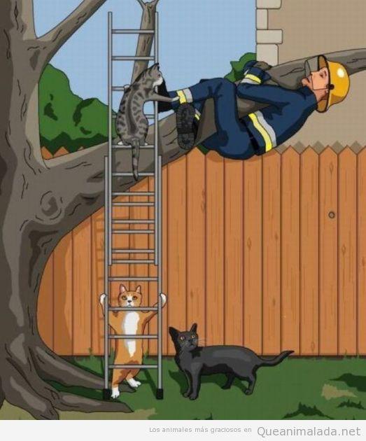 Ilustración graciosa, en un mundo paralelo, los gatos y los bomberos