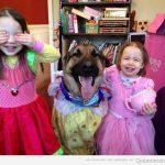 Perros que lo dan todo cuando juegan con niñas