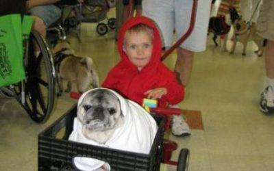 Niño con su perro haciendo la mítica escena de ET en la cesta de la bicicleta