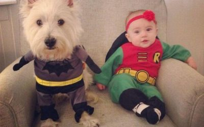 Ya nos estamos preparando para Halloween, este año iremos de Batman y Robin