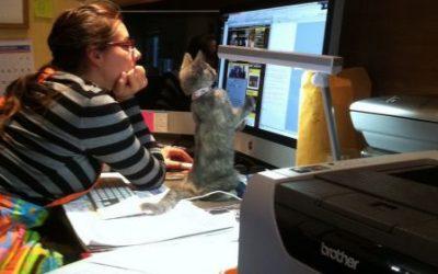 A tu gato le parece suuuper interesante lo que sale en la pantalla del ordenador…