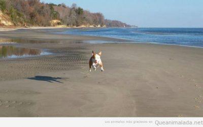 En tu primer día de playa… yeaaaaaaaah