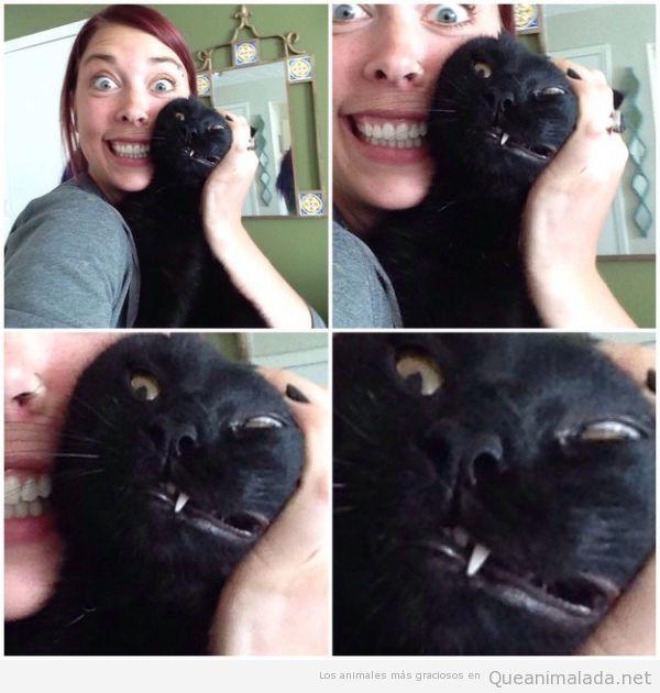 Foto divertida selfie con gato