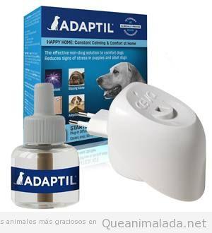 Difusor anti estrés perros