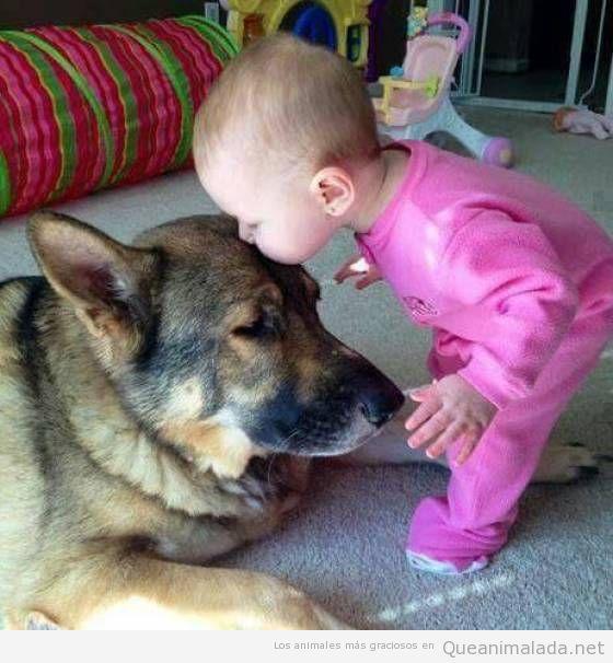 El beso más tierno del mundo: de un bebé a un perro