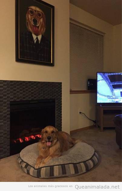 Foto graciosa perro con su retrato encima chimenea