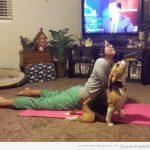 y por eso en yoga a esta postura le llaman la del perro boca arriba