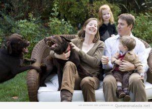 Foto de familia con dos perros enfadados