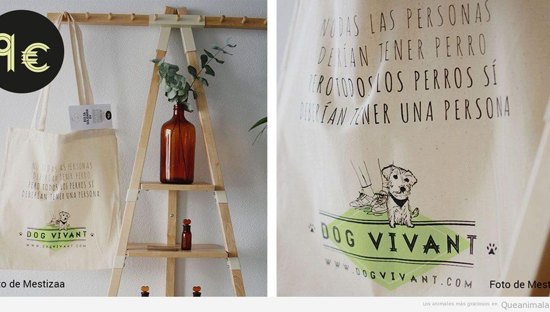 Viaja con tu perro, descubre con Dog Vivant todos los establecimientos que los aceptan