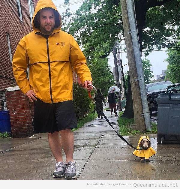 Hombre y perro con el mismo chubasquero amarillo bajo la lluvia… puro amor