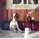 Un café, por favor, que no se me va el sueño hoy