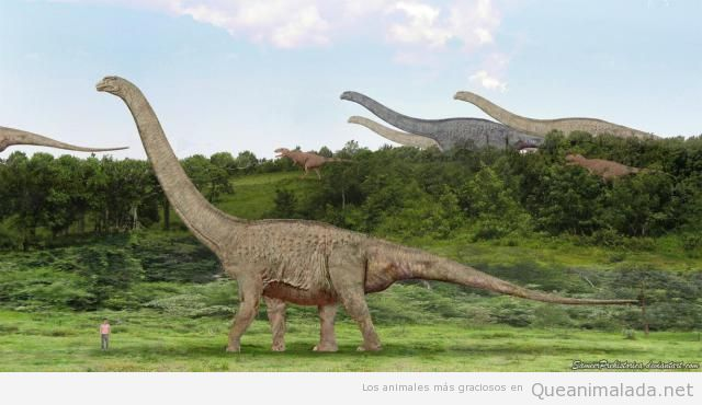 Argentinosaurus dinosaurio más pesado