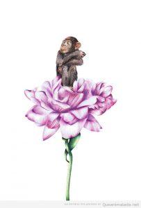 Ilustraciones animales, monos