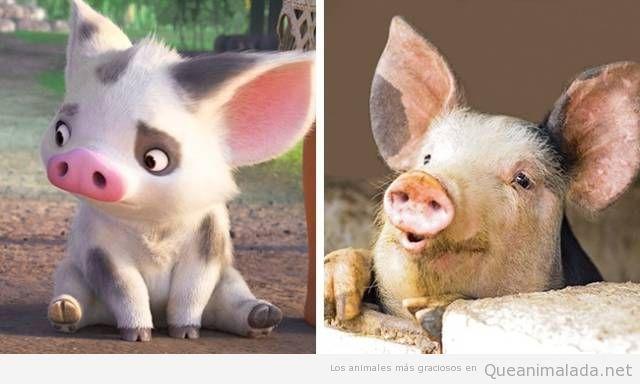 Animales de dibujos animados y sus dobles en la vida real 7