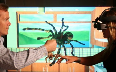 Cómo combatir la fobia a las arañas