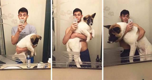 Perro de cachorro a adulto 5