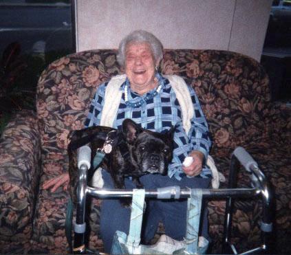 Mejores razas de perro para personas mayores, Bulldog francés
