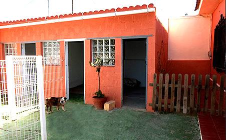 Residencia canina Sevilla Petjilton 3