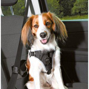 Arnés de seguridad para perros en coche