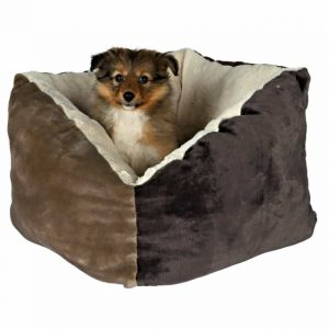 Camas caja para perros molonas