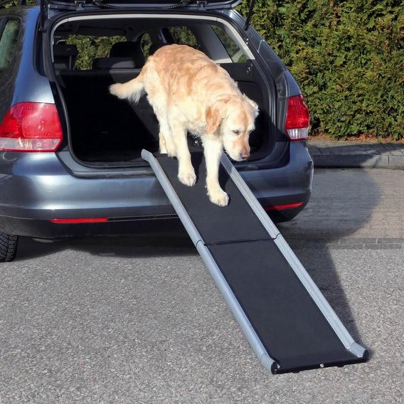 Rampa acceso perro maletero coche