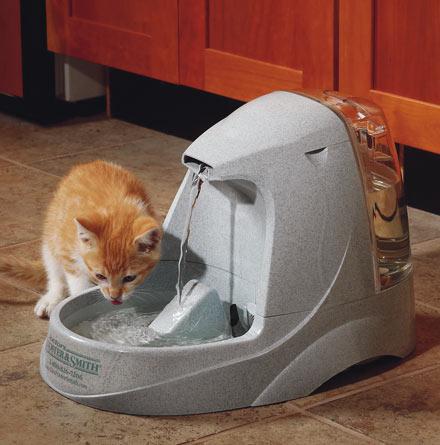 Bebedero fuente gatos 3