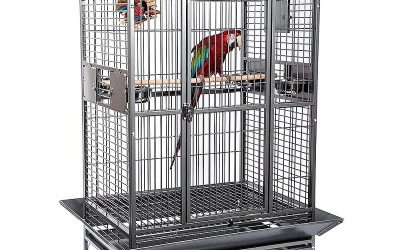 Tipos de jaulas para pájaros