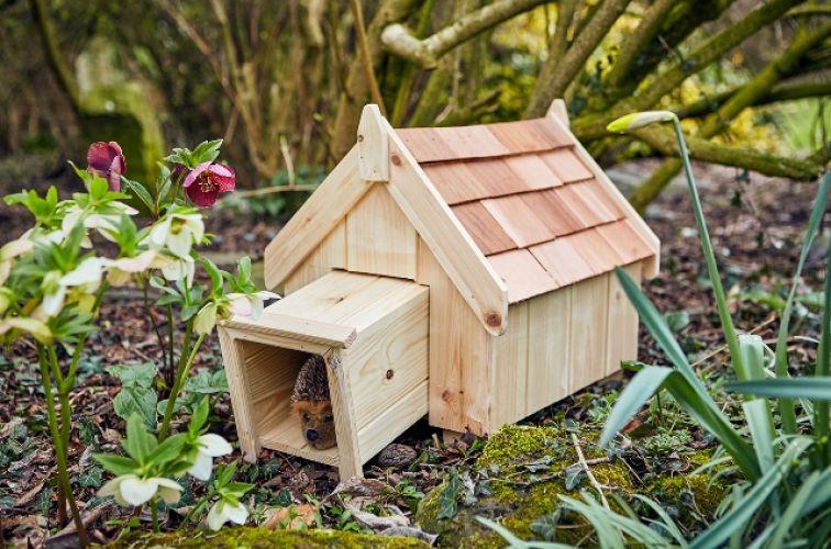 Casa madera erizo