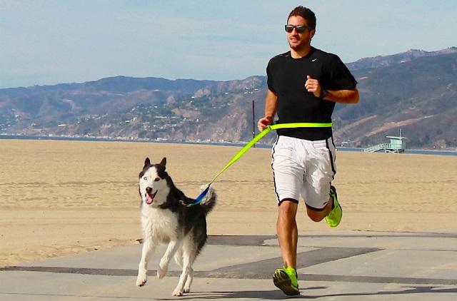 Correr con perro grande