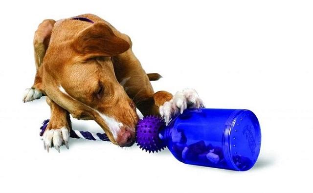 Juguete dispensador recompensa perros