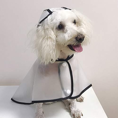 Chubasquero perro capa transparente