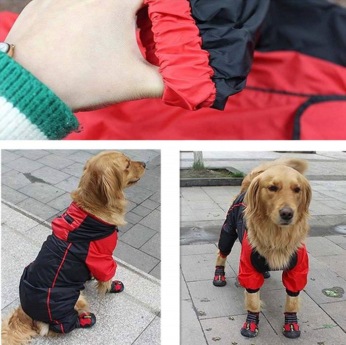 Chubasquero perro anorak nieve